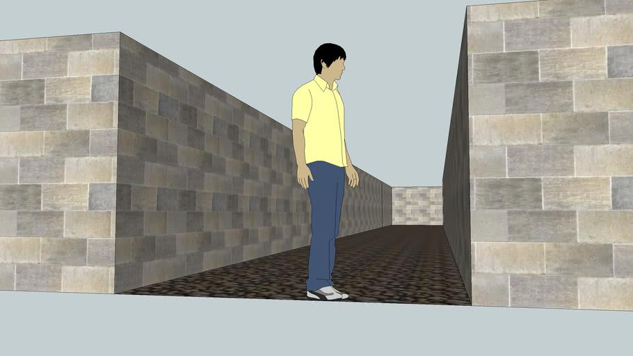 Bricks Maze