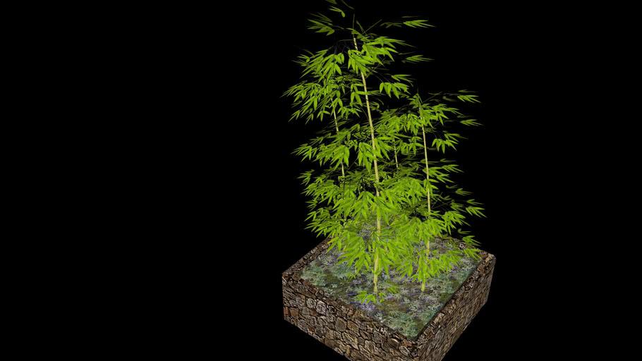 Bamboo bush 3D