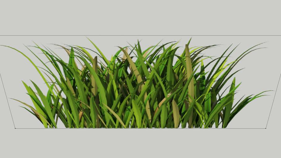 V-Ray proxy - wild-grass ...