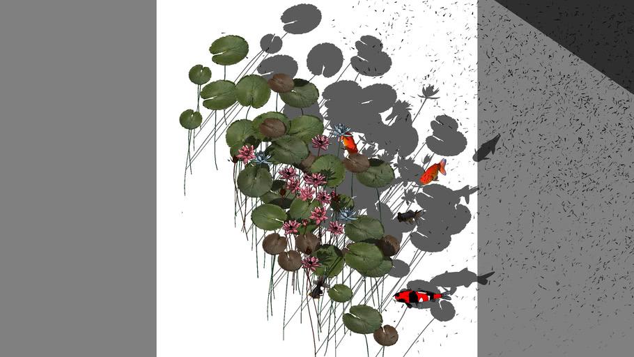 Plant_Lotus_02