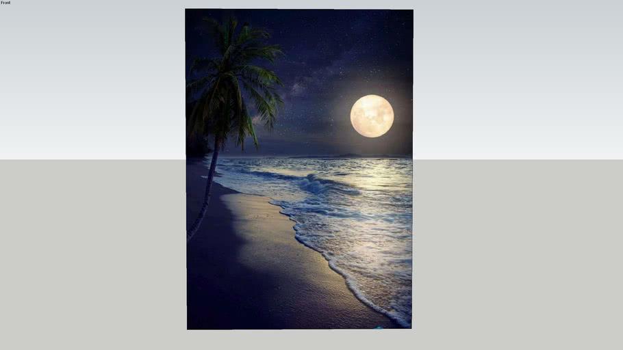 月夜海灘    Moonlight beach    海報 poster