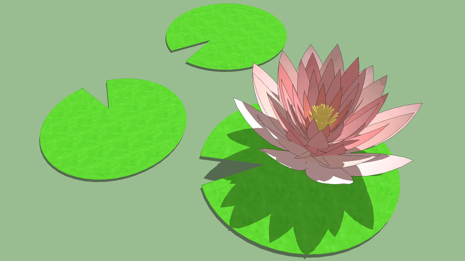 WATER LILY B