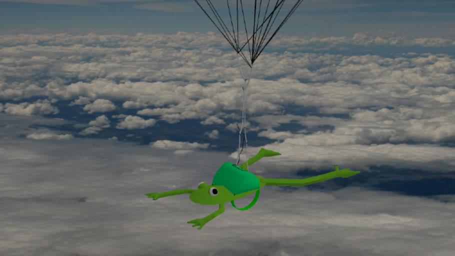 A Skydiving Frog