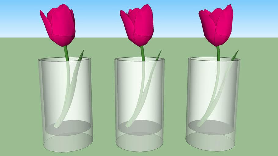 Small glass vase tulip
