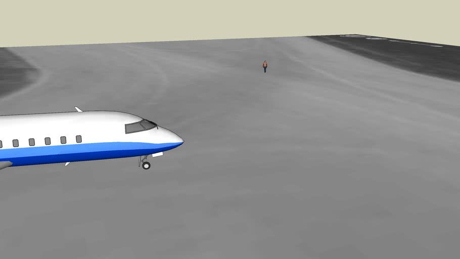Aereo Palermitano al decollo