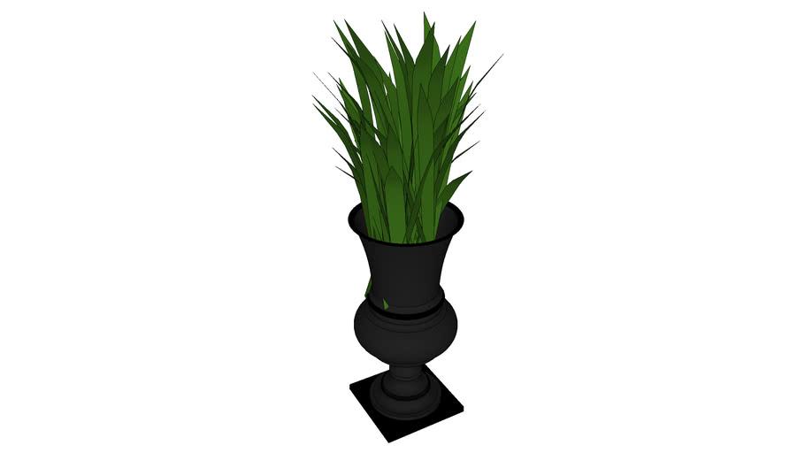 Taça e planta