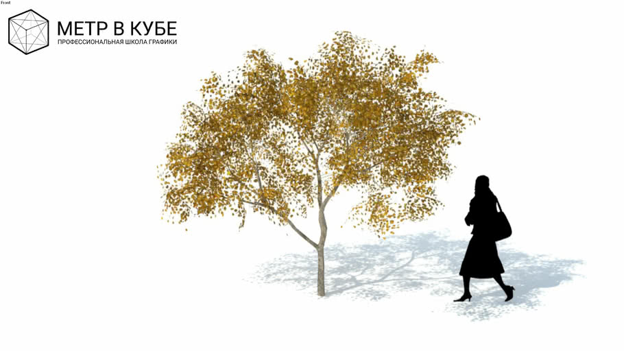 Low poly 3d tree fall autumn (036)