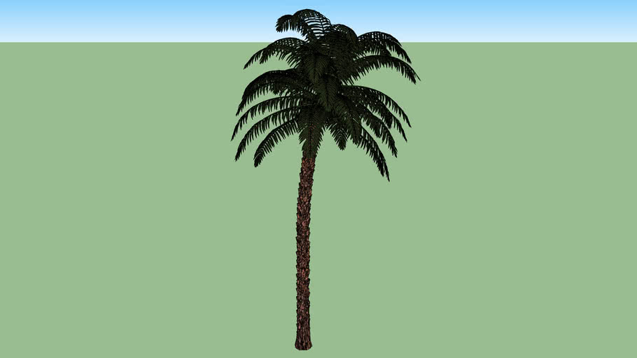 palmera 2015