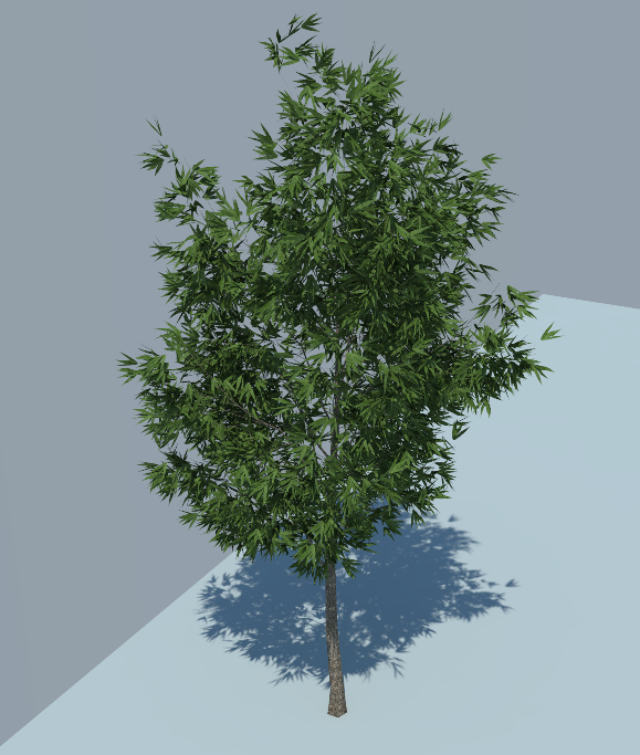 Outdoor Tree&Plants