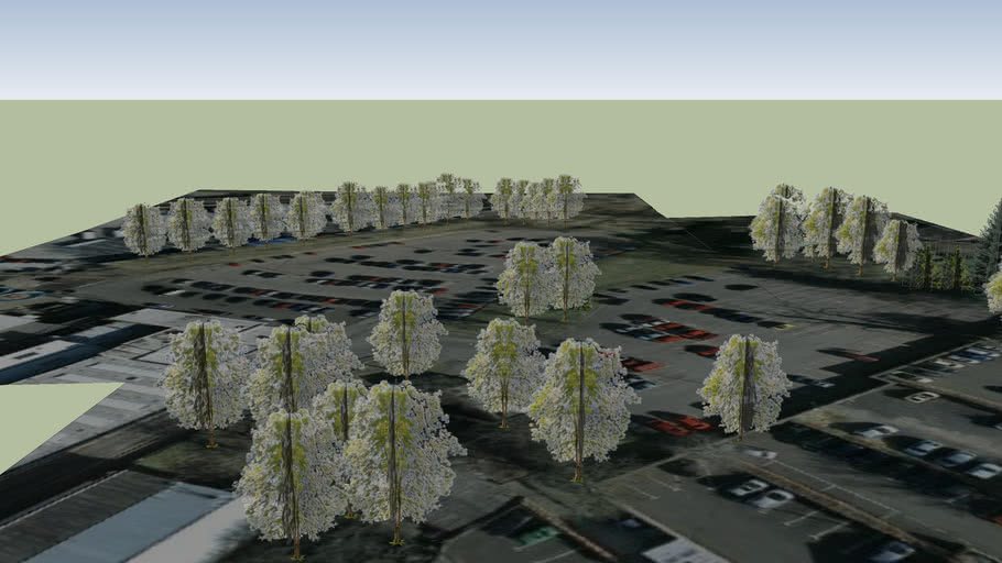 Railway Road Coleraine - Leisure Centre Car Park Trees