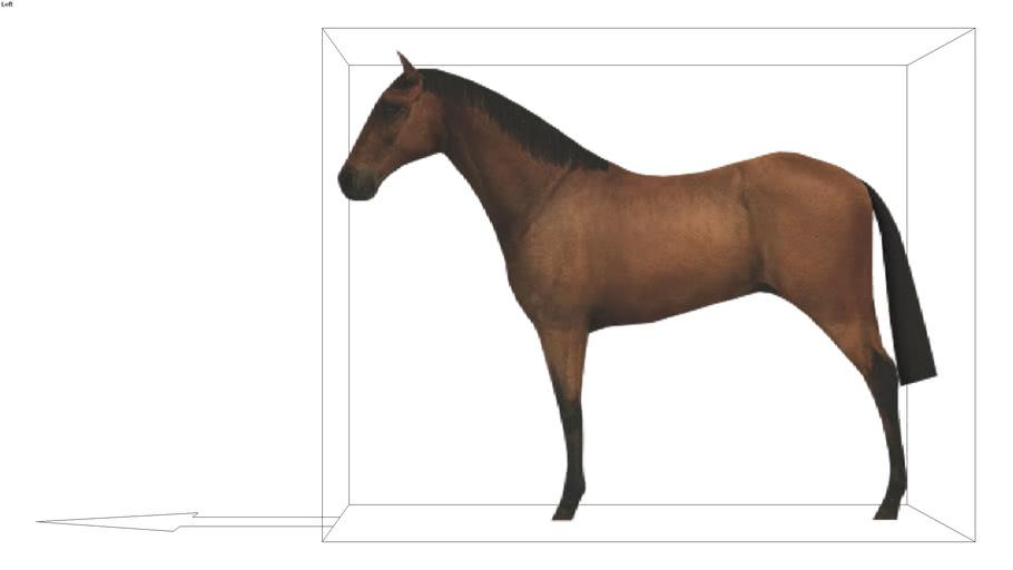 ROCKIT3D | Animal 0011 horse