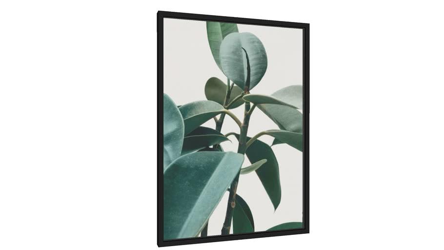 Quadro Botânico - Galeria9, por Bela Figura