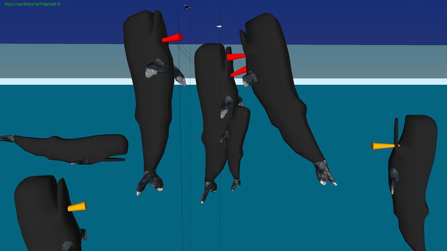 protocol sperm whale conf call dare win