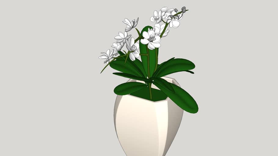 Vaso de flores - 2