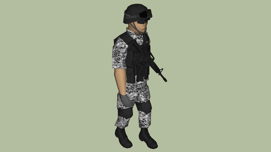 policia naval de semar de mexico