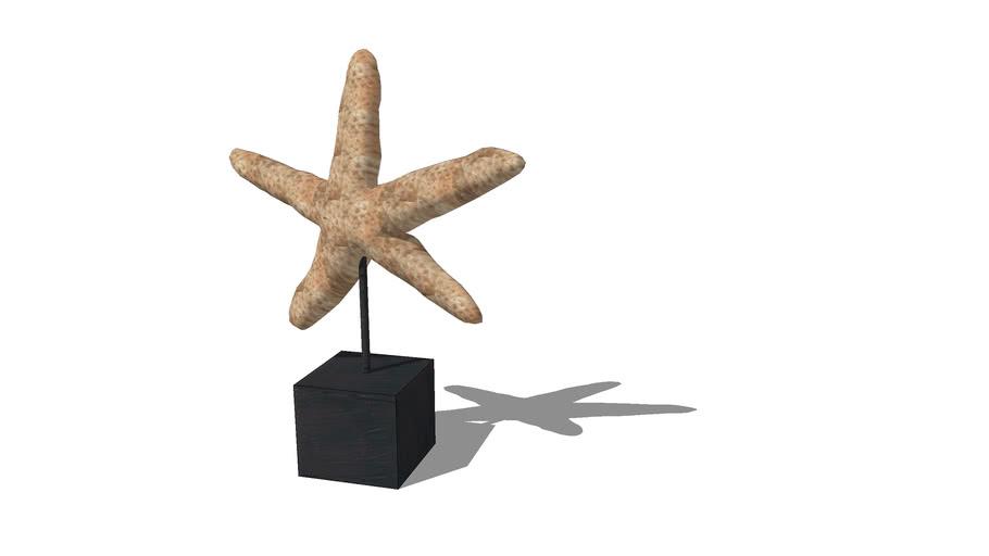 starfish statue