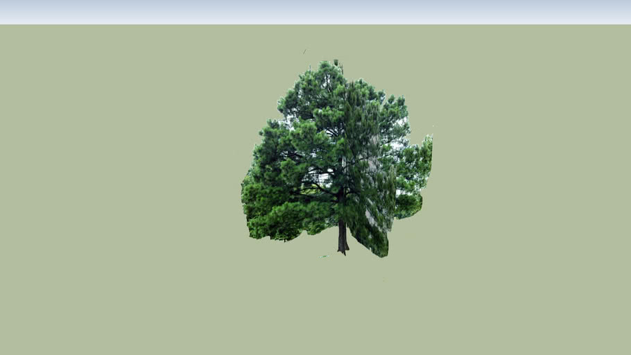 My Test Tree 2