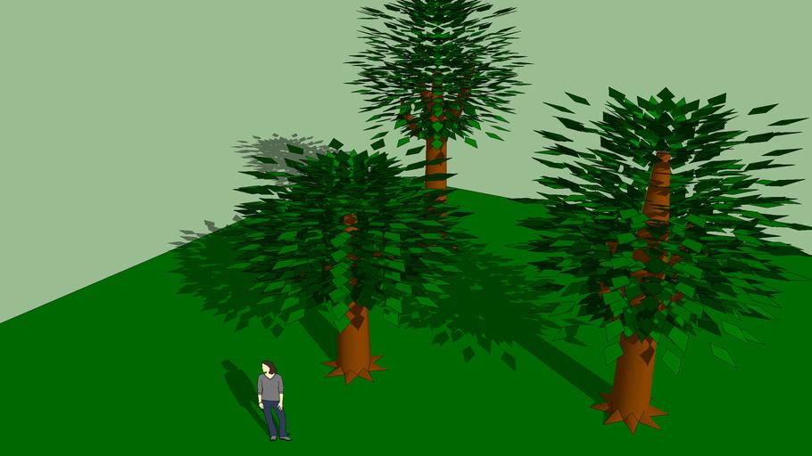 Tree Set 2