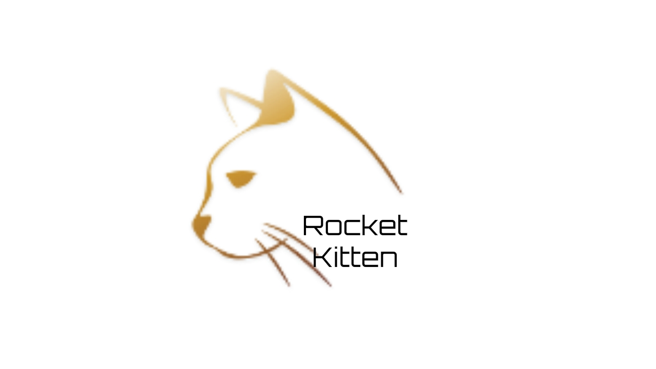 Rocket Kitten Design