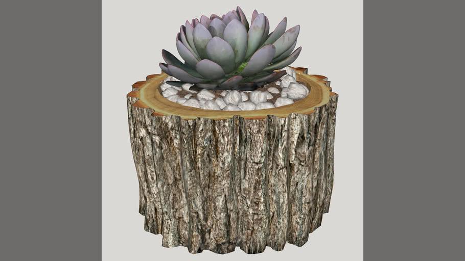 tronco com plantinha
