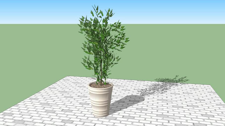 Planter (20)