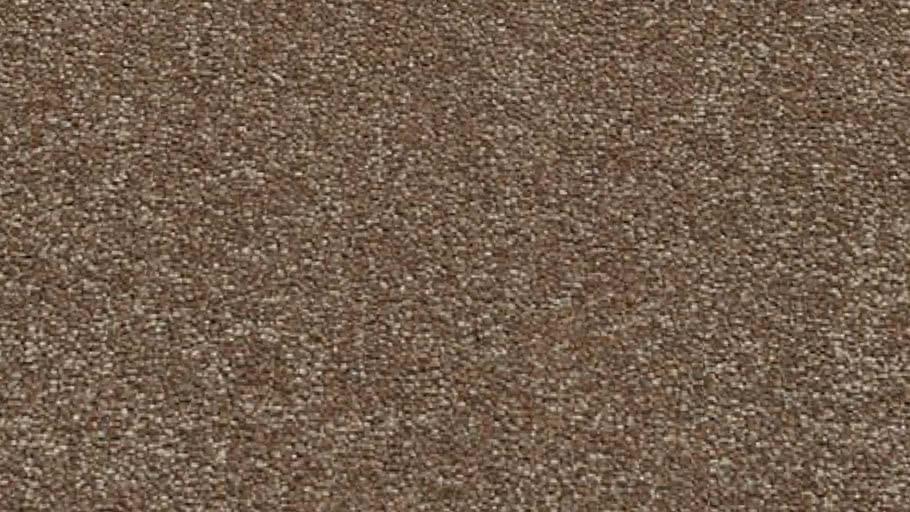 Grand Pix Barricade Carpet