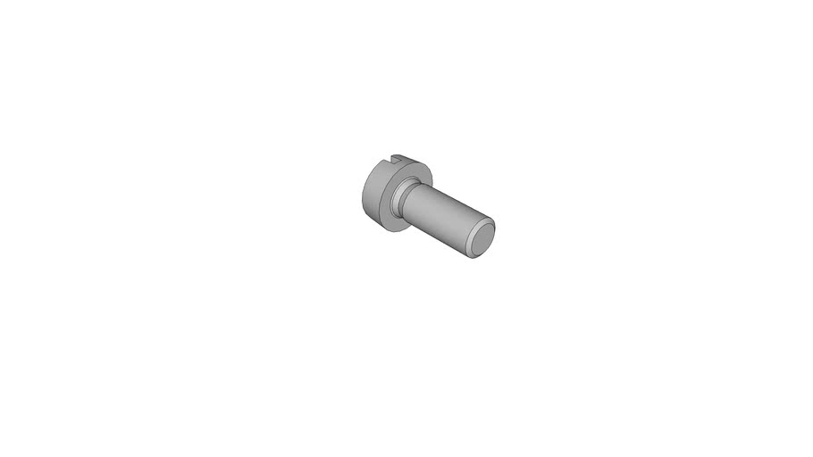 0702043604 Slotted cheese head screws DIN 84 AM2.5x6