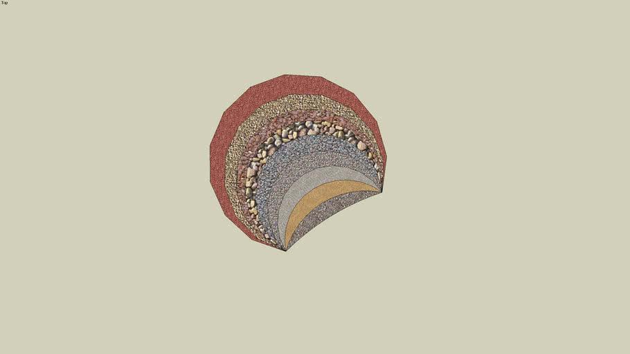 2D Seashell