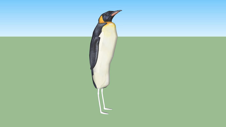 strange penguin——crane penguin