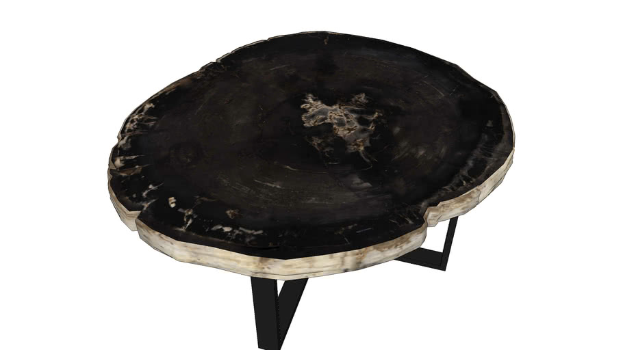 [JATRA] Petrified wood Coffee Table