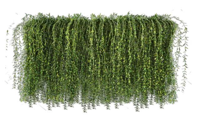 צמחים + ריהוט גן