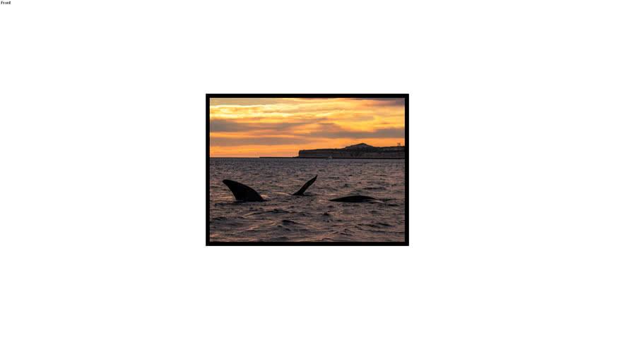 Quadro Alexandry - Brincadeiras de baleia