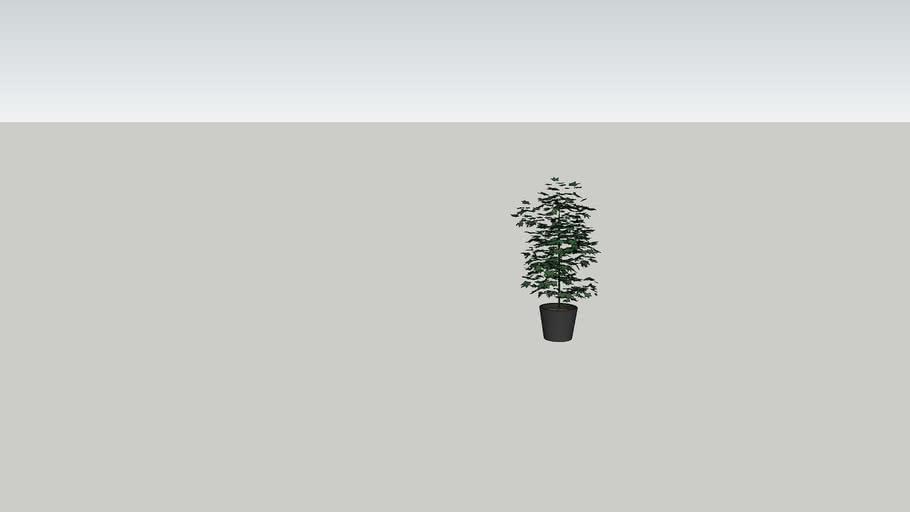 Dummy Plant Tree