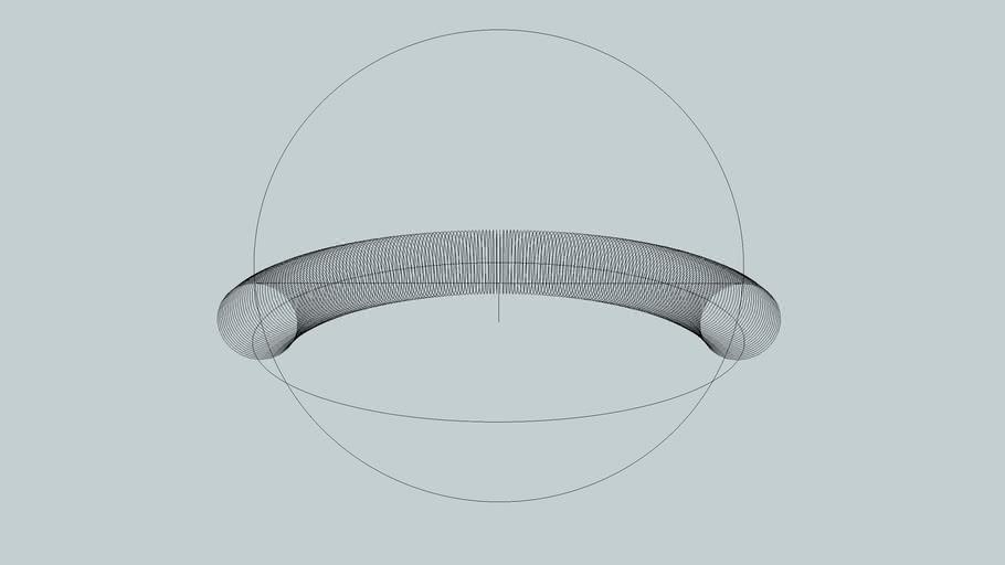 Toroidal Ring Singularity