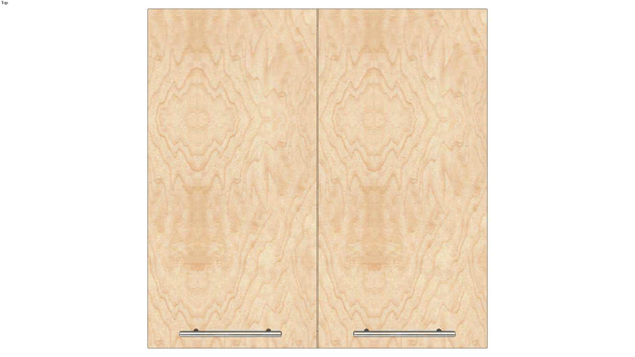 Wall Double Door 30Hx15D