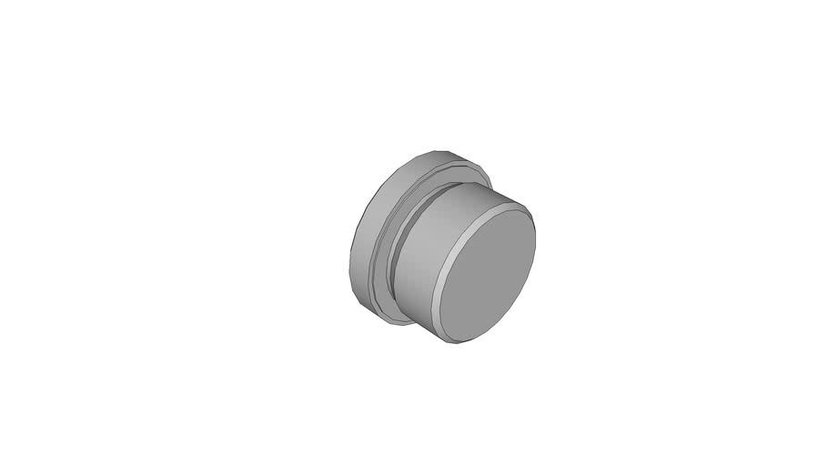 01 Socket head port plugs - 15-34/...