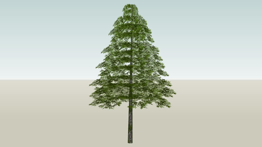 Evergreen Spruce tree (Low poly 314kb)
