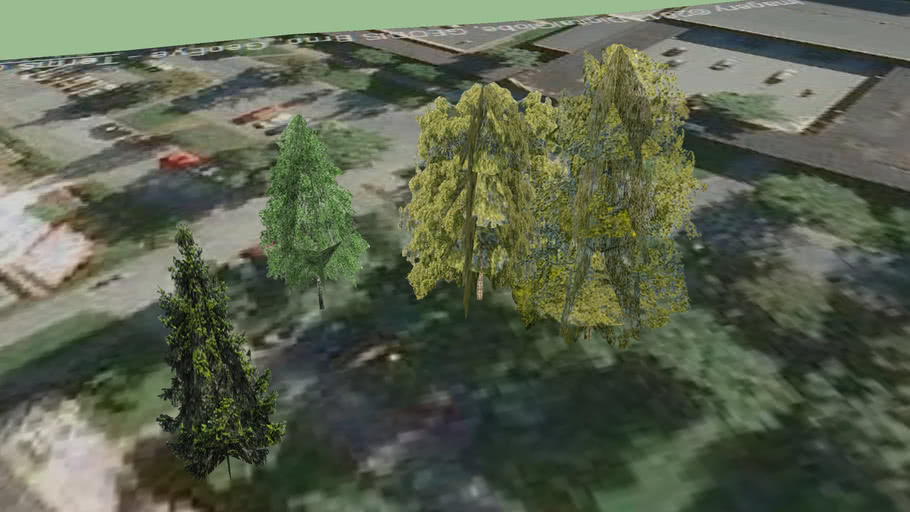Trinec - trees - 27