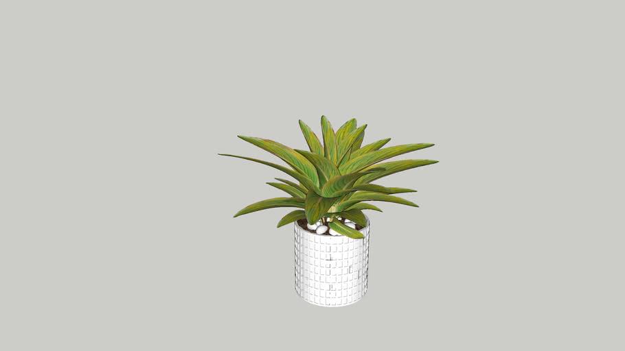 Vegetation 04
