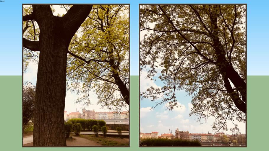 Praga 1 e 2