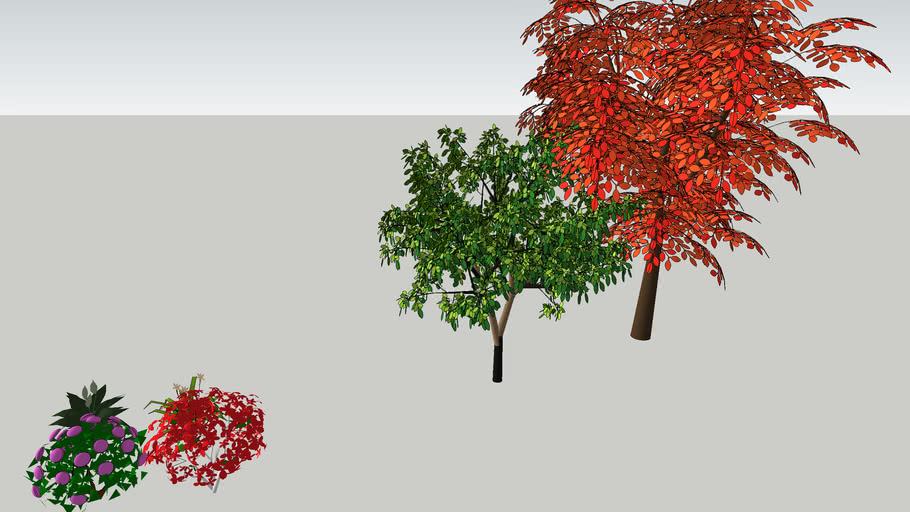 2 дерева и кусты