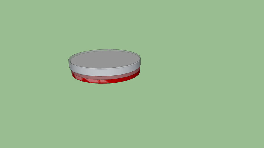 Petri Dish With Culture