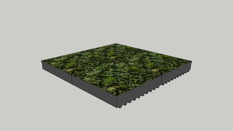 Green Roof Tray System: Pre-Grown