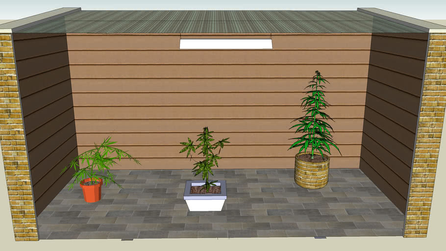 pousse de cannabis hein fabrice mdr