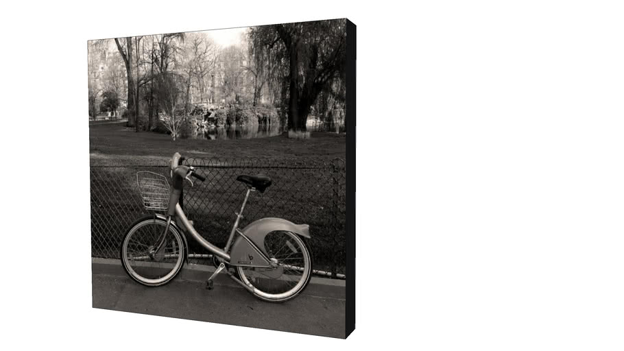 Quadro Dorival Moreira - Coleção Paris: Vélo