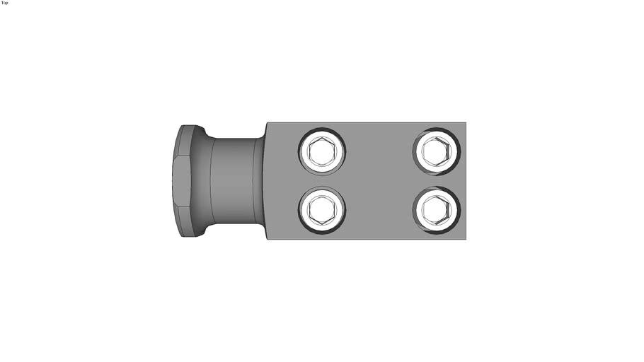 Lifting lugs with screws