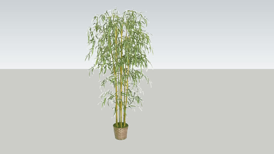 Low poly, Decorative Bamboo Plant