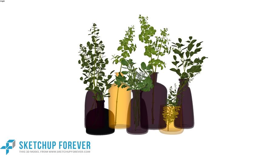 Chậu cây nhỏ, bình hoa, bonsai