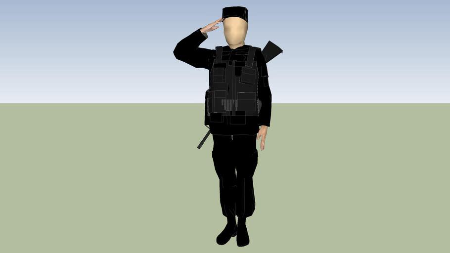 policia estatal seguridad publica de ciudad de mexico distrito federal