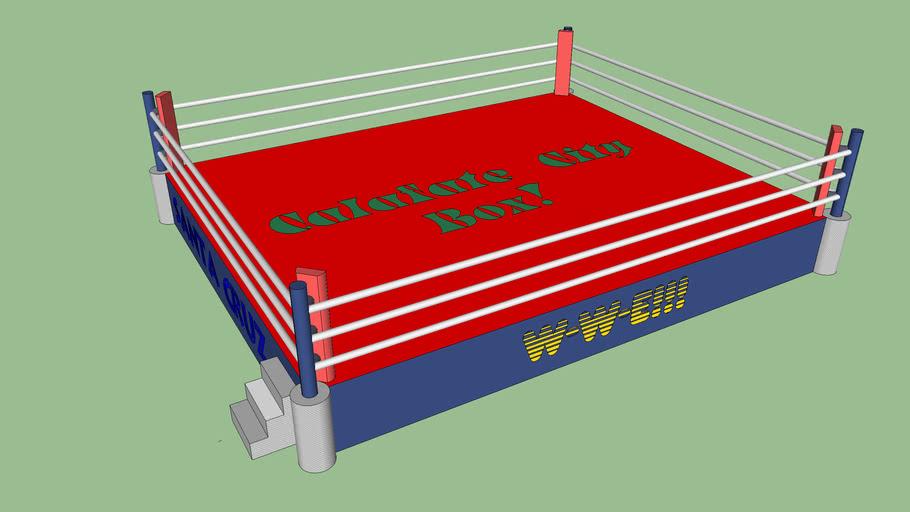 Ring de Boxeo ( Calafate City Box )